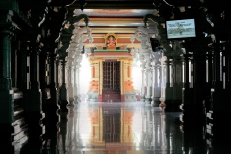 Pillayar Sannithi/Shrine